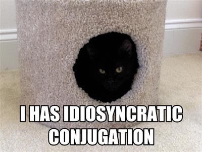idiosyncratic-conjugation-lolcats-kitty-pidgin